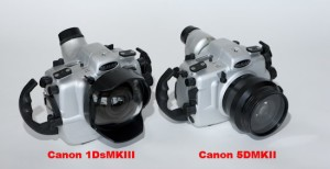 SEACAM 5DII housing, shown here with larger SEACAM DsMKIII housing.