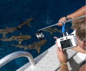 Polecam Monitor on boat